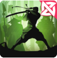 Shadow Fight 2 APK v2.5.2- Elmas Hileli